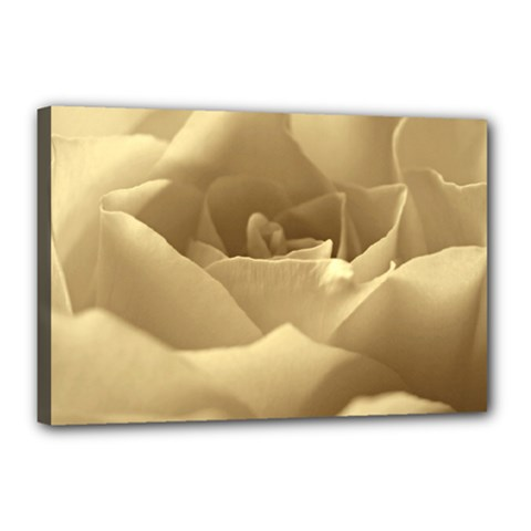 Rose  Canvas 18  X 12  (framed) by Siebenhuehner
