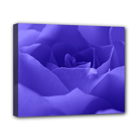 Rose Canvas 10  X 8  (framed) by Siebenhuehner