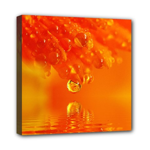 Waterdrops Mini Canvas 8  X 8  (framed) by Siebenhuehner
