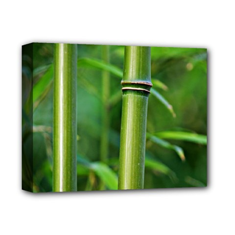 Bamboo Deluxe Canvas 14  X 11  (framed) by Siebenhuehner