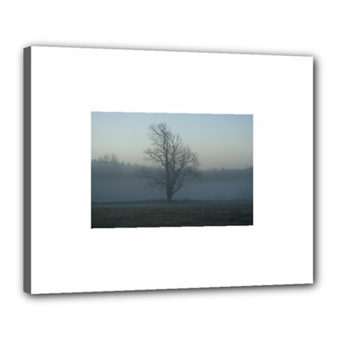 Foggy Tree Canvas 20  X 16  (framed) by plainandsimple