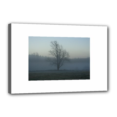 Foggy Tree Canvas 18  X 12  (framed) by plainandsimple