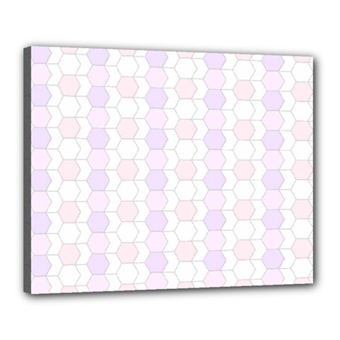 Allover Graphic Soft Pink Canvas 20  X 16  (framed) by ImpressiveMoments