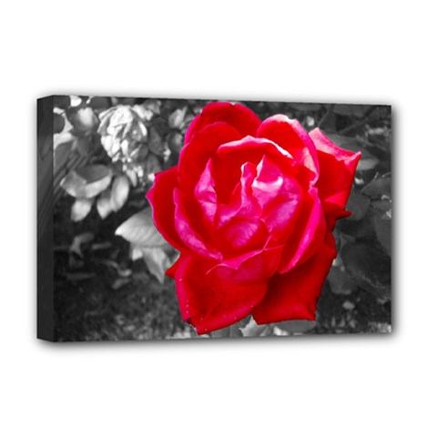 Red Rose Deluxe Canvas 18  X 12  (framed)