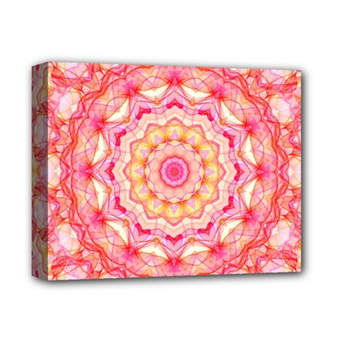 Yellow Pink Romance Deluxe Canvas 14  X 11  (framed) by Zandiepants