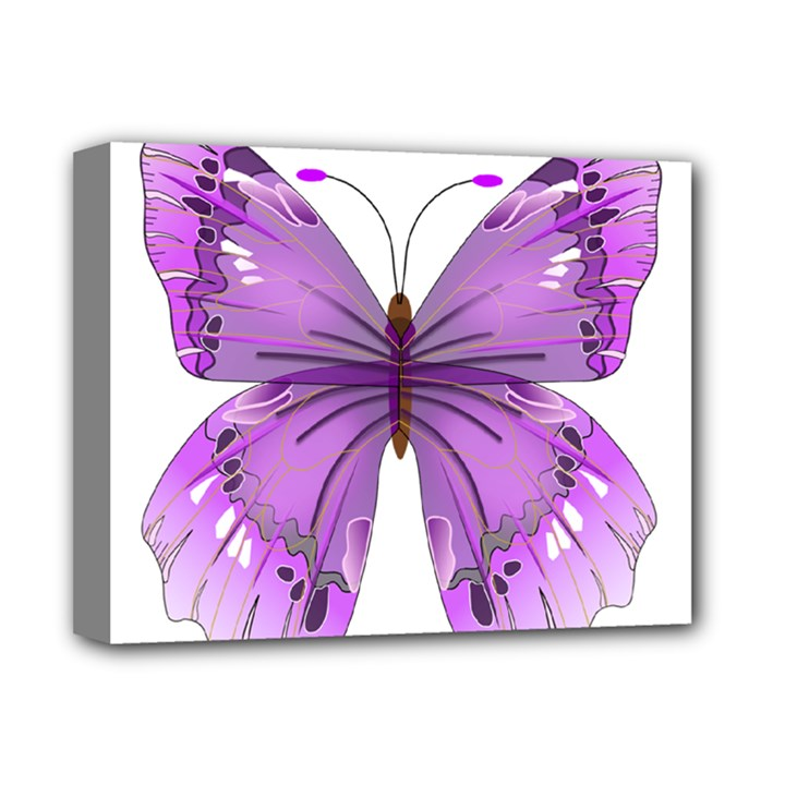 Purple Awareness Butterfly Deluxe Canvas 14  x 11  (Framed)