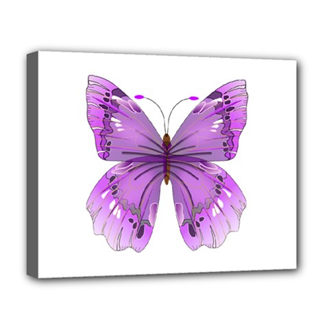 Purple Awareness Butterfly Deluxe Canvas 20  X 16  (framed) by FunWithFibro