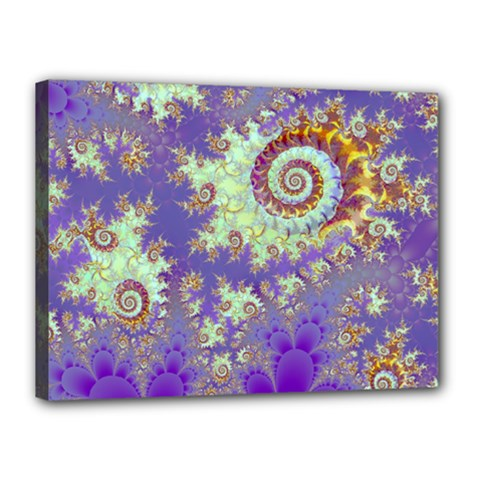 Sea Shell Spiral, Abstract Violet Cyan Stars Canvas 16  X 12  (framed) by DianeClancy
