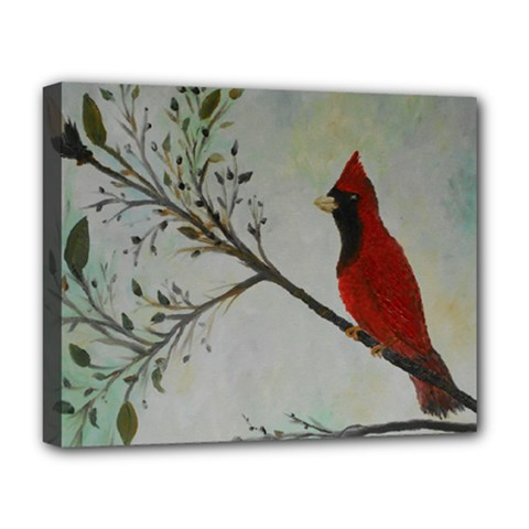Sweet Red Cardinal Deluxe Canvas 20  X 16  (framed) by rokinronda
