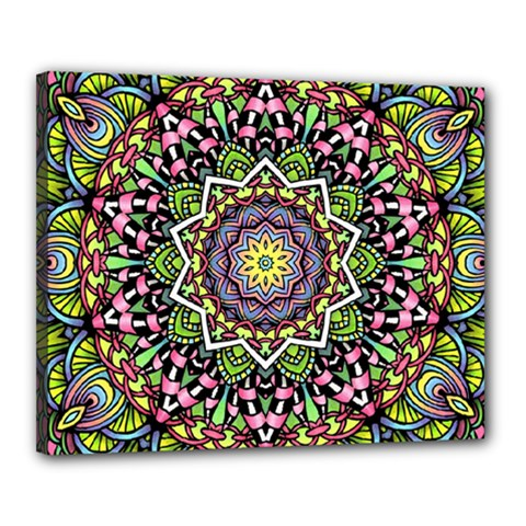 Psychedelic Leaves Mandala Canvas 20  X 16  (framed) by Zandiepants
