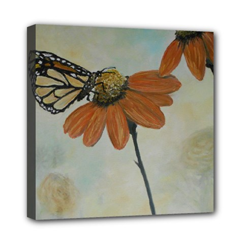 Monarch Mini Canvas 8  X 8  (framed) by rokinronda