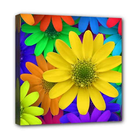 Gerbera Daisies Mini Canvas 8  X 8  (framed) by StuffOrSomething