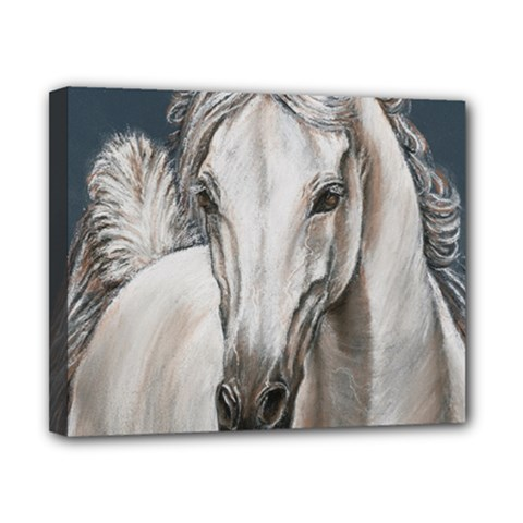 Breeze Canvas 10  X 8  (framed) by TonyaButcher