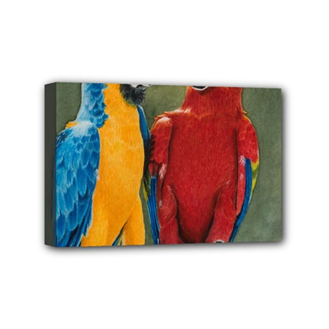 Feathered Friends Mini Canvas 6  X 4  (framed) by TonyaButcher