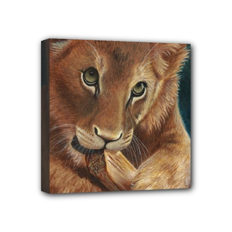 Playful  Mini Canvas 4  X 4  (framed) by TonyaButcher
