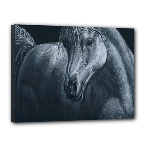 Equine Grace  Canvas 16  X 12  (framed) by TonyaButcher