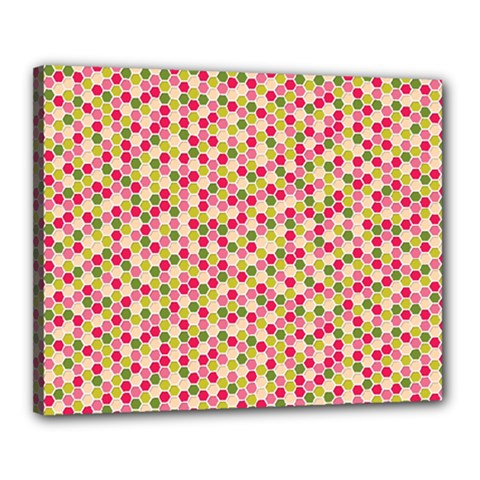 Pink Green Beehive Pattern Canvas 20  X 16  (framed) by Zandiepants