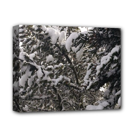 Snowy Trees Deluxe Canvas 14  X 11  (framed) by DmitrysTravels