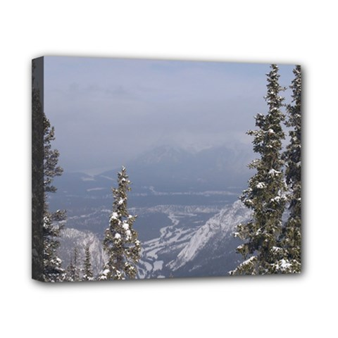 Trees Canvas 10  X 8  (framed) by DmitrysTravels