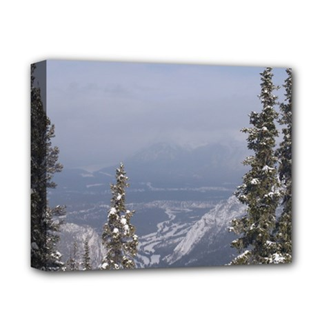 Trees Deluxe Canvas 14  X 11  (framed) by DmitrysTravels