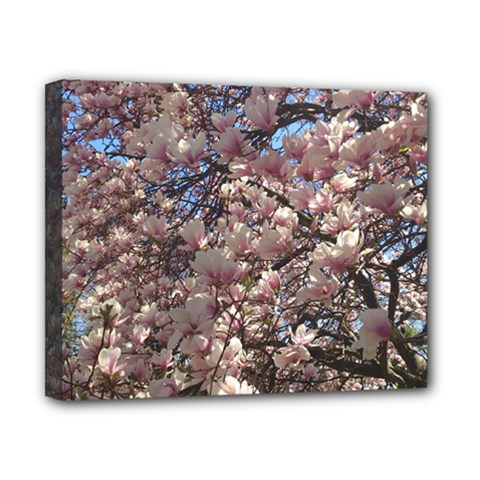 Sakura Canvas 10  X 8  (framed) by DmitrysTravels