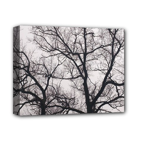 Tree Deluxe Canvas 14  X 11  (framed) by DmitrysTravels