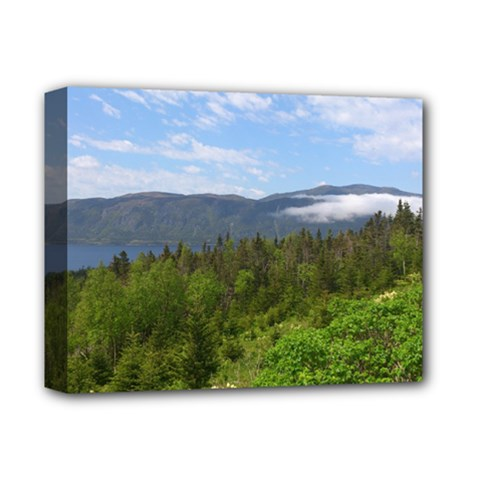 Newfoundland Deluxe Canvas 14  X 11  (framed) by DmitrysTravels