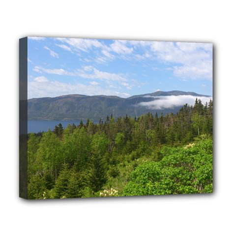 Newfoundland Deluxe Canvas 20  X 16  (framed) by DmitrysTravels