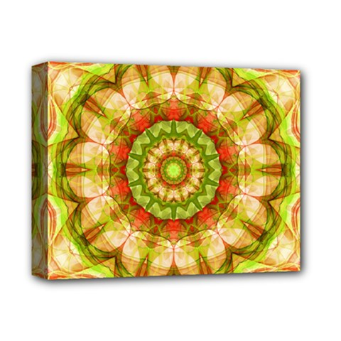 Red Green Apples Mandala Deluxe Canvas 14  X 11  (framed) by Zandiepants