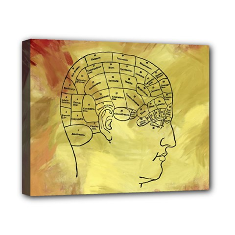 Brain Map Canvas 10  X 8  (framed) by StuffOrSomething