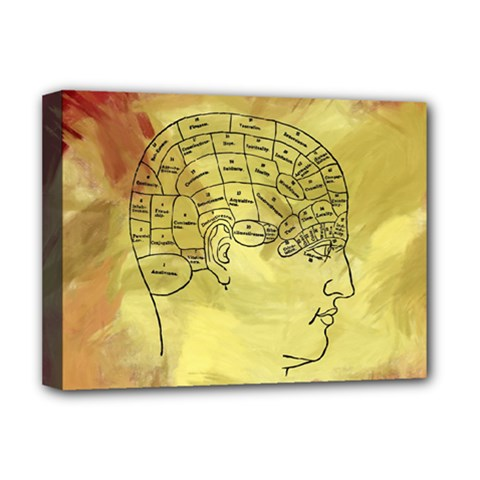 Brain Map Deluxe Canvas 16  X 12  (framed)  by StuffOrSomething