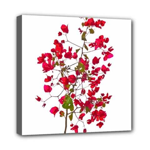 Red Petals Mini Canvas 8  X 8  (framed) by dflcprints