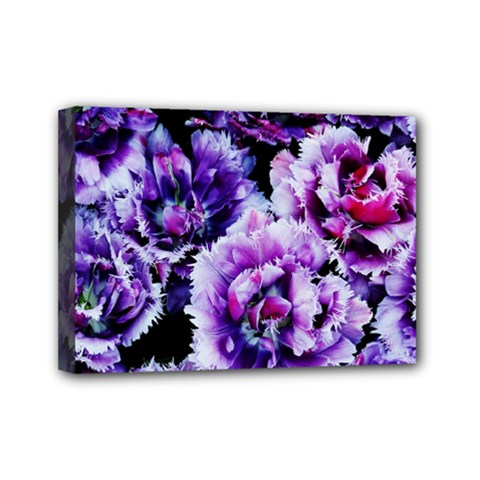 Purple Wildflowers Of Hope Mini Canvas 7  X 5  (framed) by FunWithFibro
