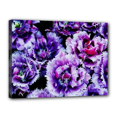 Purple Wildflowers Of Hope Canvas 16  X 12  (framed) by FunWithFibro