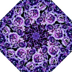 Purple Wildflowers Of Hope Hook Handle Umbrella (medium) by FunWithFibro