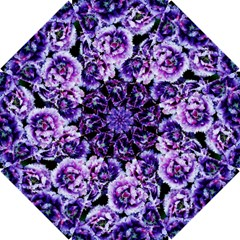Purple Wildflowers Of Hope Hook Handle Umbrella (large) by FunWithFibro
