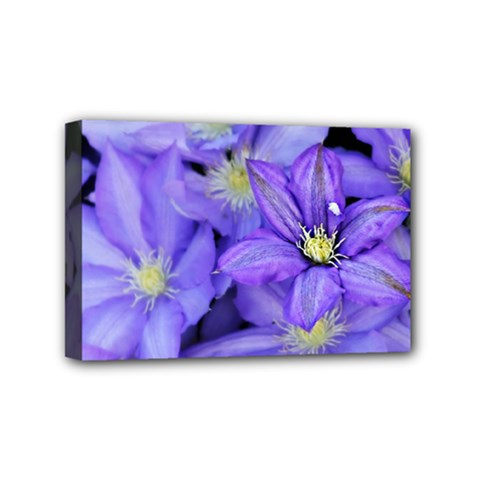 Purple Wildflowers For Fms Mini Canvas 6  X 4  (framed) by FunWithFibro