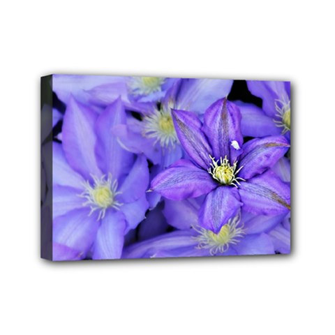 Purple Wildflowers For Fms Mini Canvas 7  X 5  (framed) by FunWithFibro