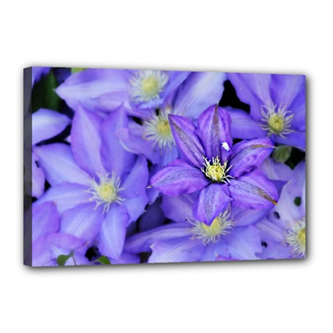Purple Wildflowers For Fms Canvas 18  X 12  (framed) by FunWithFibro