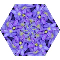 Purple Wildflowers For Fms Mini Folding Umbrella by FunWithFibro