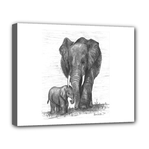 Elephant Deluxe Canvas 20  X 16  (framed) by sdunleveyartwork