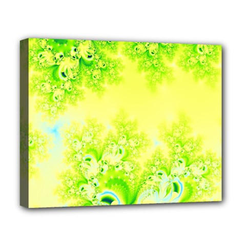 Sunny Spring Frost Fractal Deluxe Canvas 20  X 16  (framed) by Artist4God