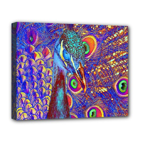 Peacock Deluxe Canvas 20  X 16  (framed) by icarusismartdesigns