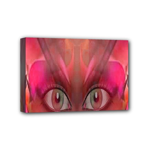 Hypnotized Mini Canvas 6  X 4  (framed) by icarusismartdesigns