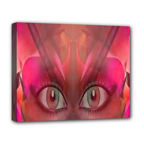 Hypnotized Deluxe Canvas 20  X 16  (framed) by icarusismartdesigns