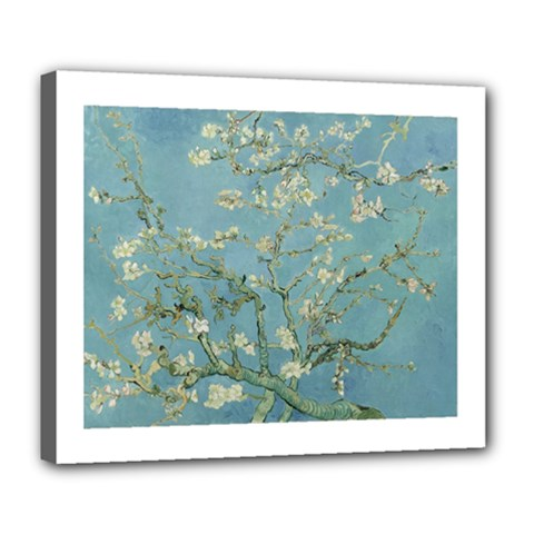 Vincent Van Gogh, Almond Blossom Deluxe Canvas 24  X 20  (framed) by Oldmasters