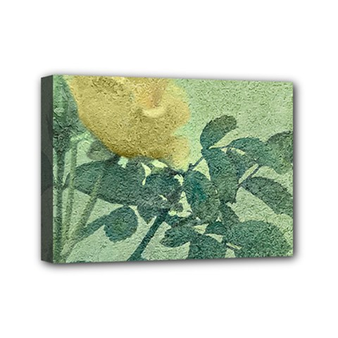 Yellow Rose Vintage Style  Mini Canvas 7  X 5  (framed) by dflcprints