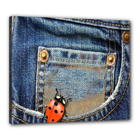 Blue Jean Lady Bug Canvas 24  X 20  (framed)