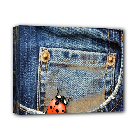 Blue Jean Lady Bug Deluxe Canvas 14  X 11  (framed) by TheWowFactor