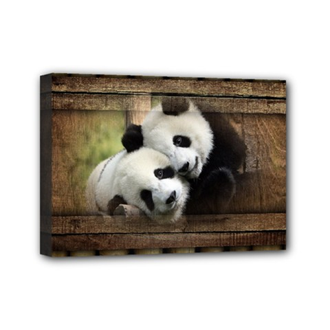 Panda Love Mini Canvas 7  X 5  (framed) by TheWowFactor